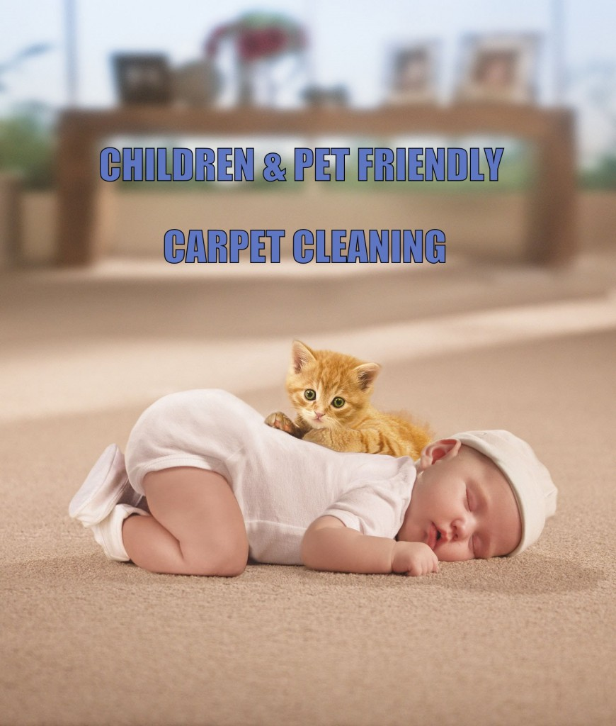 Pet Save Carpet Cleaning