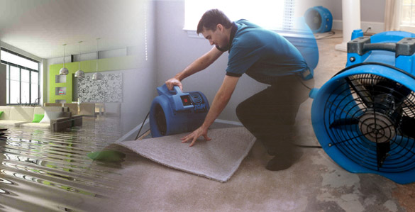 water damage services ottawa