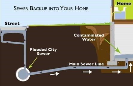 sewer backup Ottawa